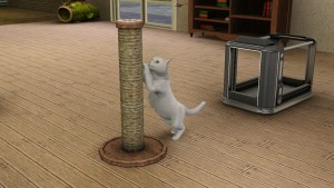 Thesims Cats And Dogs Free Download Easy
